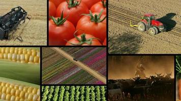 Agriculture, video montage