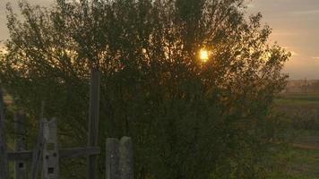 Antenne: Landwirtschaft bei Sonnenuntergang