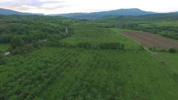 über landwirtschaftliche Gärten fliegen