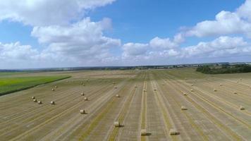 über Feldlandwirtschaft fliegen video