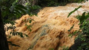 lama e água escorrendo por um curso de água na selva