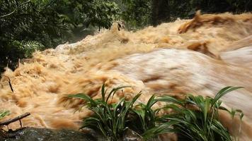 barro y agua cayendo por un curso de agua en la jungla