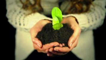 nuovo inizio concetto agricoltura ecologia