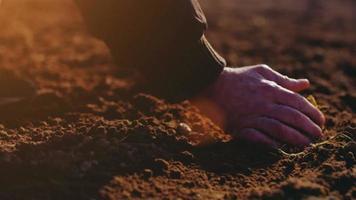 agricoltore esaminando il suolo. sfondo di agricoltura.