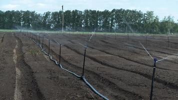 sistema de riego agrícola agua de manantial video