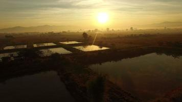 aerial view of agriculture field at morning in chiangmai thailand