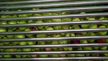 producción de jugo de manzana video