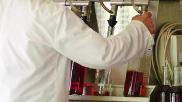 Fábrica de producción de vino, proceso de llenado de botellas.