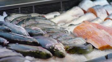 fileira de peixes em um supermercado. video