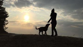 silueta de la niña y el perro contra el cielo y el sol