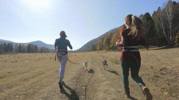 dos amigas chicas paseando sus carreras perros muy activos de los cuatro corre hacia el hombre con el tercer perro, los perros son muy activos y se divierten saltando en la carretera