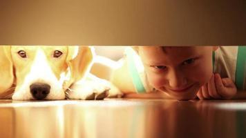Niño riendo con el mejor amigo perro beagle debajo de la cama