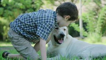 A young boy playing with his big white dog