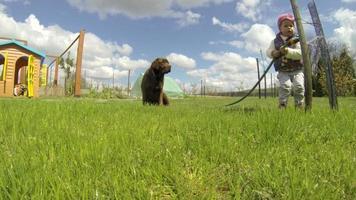 menina brincando com irrigador e lavando um cachorro