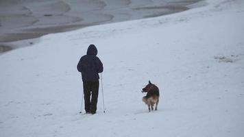 homem esquiando passeando com o cão pastor no inverno video
