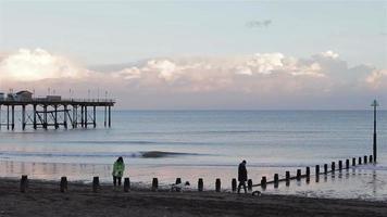 Puesta de sol sobre el muelle de Teignmouth - ws personas paseando perros en la playa video