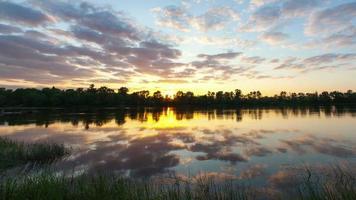nubes sobre un pantano con plantas y un árbol. time-lapse una puesta de sol con nubes brillantes