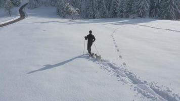 aéreo - jovem fazendo caminhadas de inverno na companhia de um cachorro video