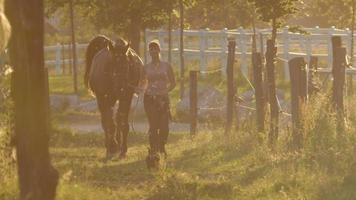 Zeitlupe: junge Frau führt ein Pferd vom Feld in die Scheune bei goldenem Sonnenuntergang