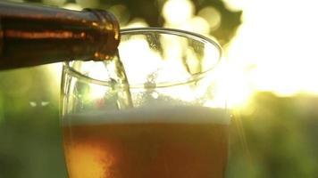 Bier wird in Glas gegossen video