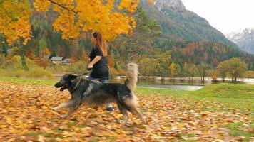 menina correndo com seu cachorro em câmera lenta 7