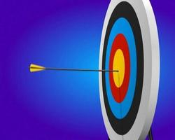 bullseye 3d animation ntsc video