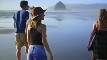 Freunde gehen zusammen den Strand entlang