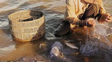 Gros plan sur le pêcheur enlevant les prises de poisson enchevêtrées et le gardant dans un panier en bambou