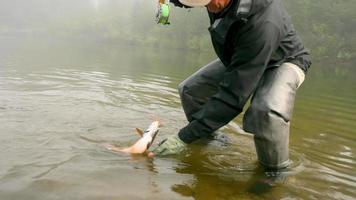 uomo che sgancia un pesce in un fiume