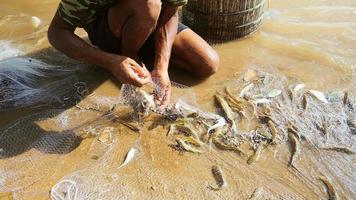 Pêcheur assis dans les eaux peu profondes de la rivière pour enlever les prises de poissons enchevêtrées et les garder dans un panier en bambou