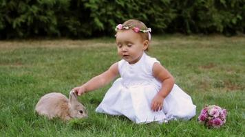 little girl playing with a rabbit in a meadow