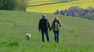 casal maduro levando golden retriever para foto de caminhada video