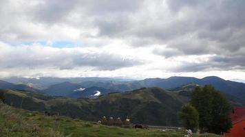 animais de fazenda no topo da montanha