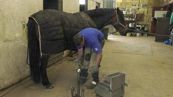 a craftsman farrier replace horseshoes