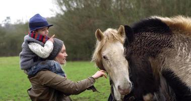 madre e figlio che accarezzano il cavallo sulla passeggiata girato su r3d