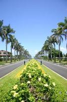 avenida en hawaii foto