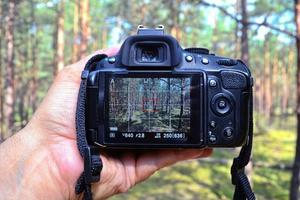 Hand holding a DSLR in the forest