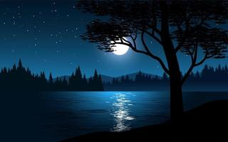Moon reflection on lake at night vector