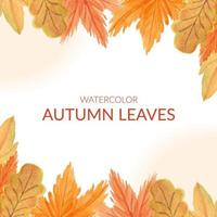 Watercolor autumn leaf border frame vector