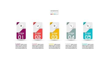 Card steps infographic design vector