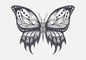 Skull butterfly illustration vector