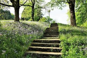 escaleras en el parque