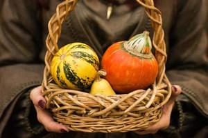 Basket with small pumpkins in hands