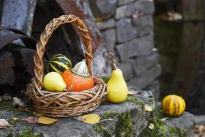 Small pumpkins in the basket