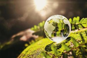 Glass globe outside with moss