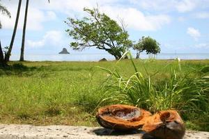 orilla del mar en oahu foto