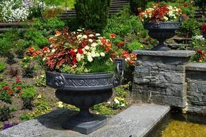 Summer garden in Germany