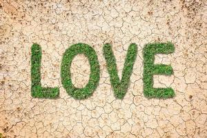 Love message in green grass