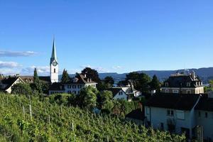 viñedo y una iglesia