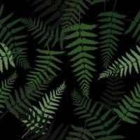 Green fern leaves pattern vector
